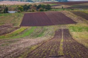 Ukraina: Parlament przedłużył moratorium na sprzedaż ziemi rolnej