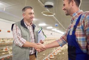 UE wzmocni rolę organizacji w negocjowaniu cen dla rolników?