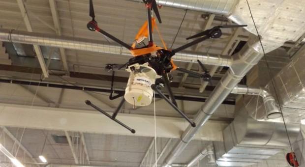 Drony do walki z omacnicą prosowianką
