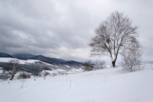 Prognoza pogody na 14 i 15 grudnia