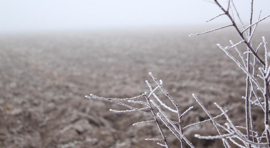 W czwartek po południu początek astronomicznej zimy