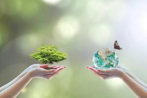Wspieranie ekologii i metod biologicznych