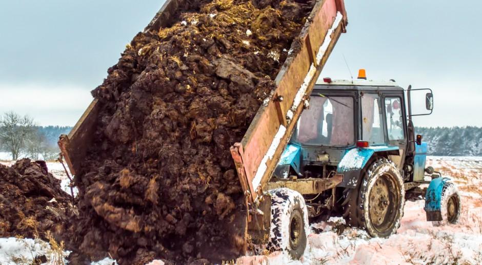 Nawozy naturalne do biogazowni czy dłużej na pola?