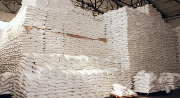 KE: Produkcja cukru może wzrosnąć o 12 proc. do 2030 r.