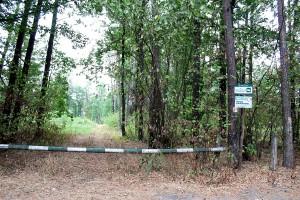 KRiR domaga się udostepnienia leśnych dróg rolnikom