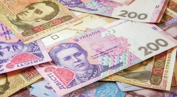 Ukraina zainwestowała więcej w rolnictwo