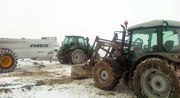 Wapnowanie zimą (cały artykuł)