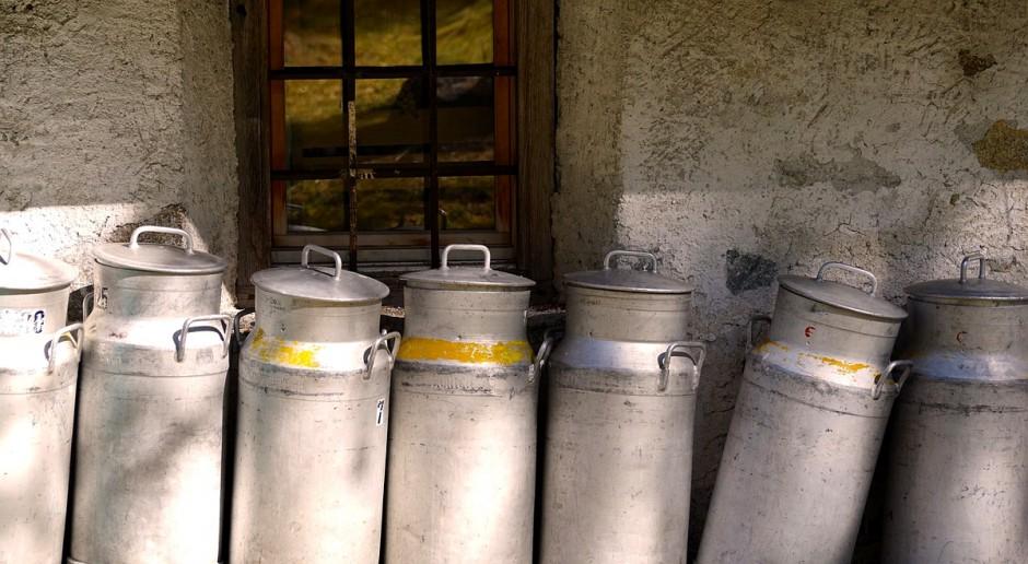 W Europie rośnie nadwyżka mleka