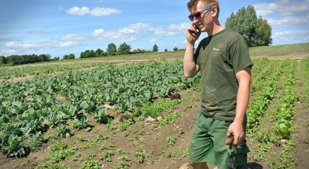 KE: Rolnictwo ekologiczne nadal rośnie