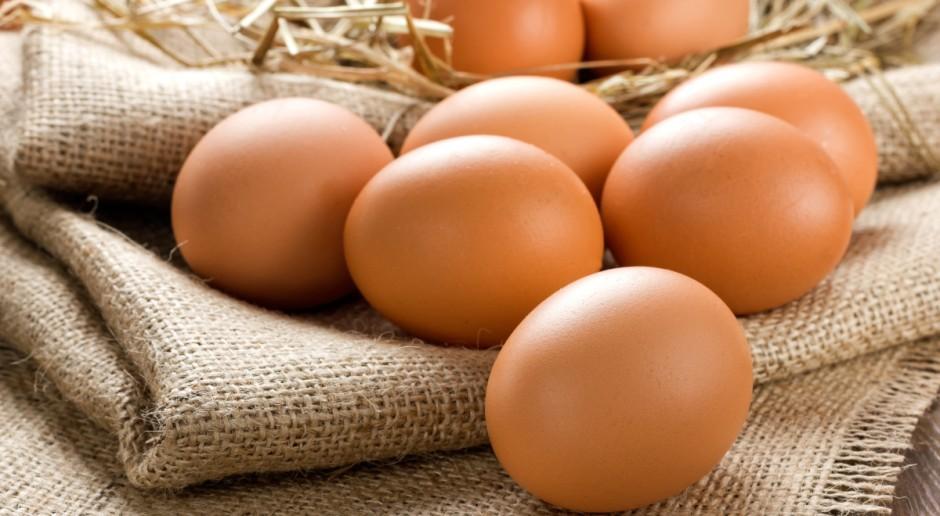 Jaja tanieją, ten rok może być trudny dla producentów