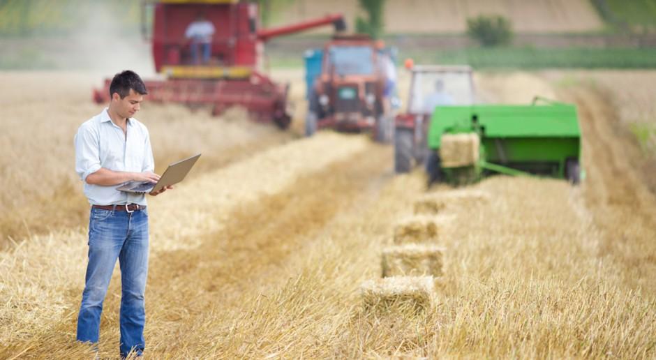 Resort rolnictwa proponuje nową umowę – o pomocy przy zbiorach