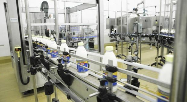 Cena mleka w skupie blisko rekordu z 2013 r.