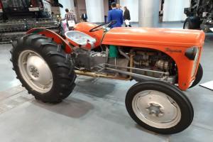 Massey Ferguson TE20 fot. GS
