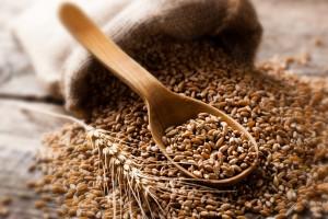Rosną ceny zbóż w USA