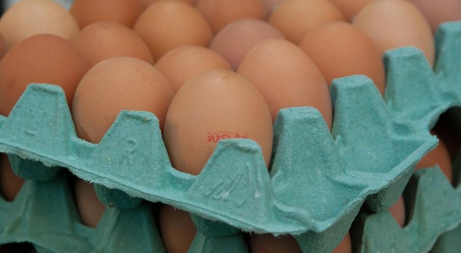 Rynek jaj: Rośnie eksport, spada cena