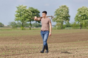 """""""Młody rolnik"""" i """"zalesianie"""" tylko do końca lipca"""