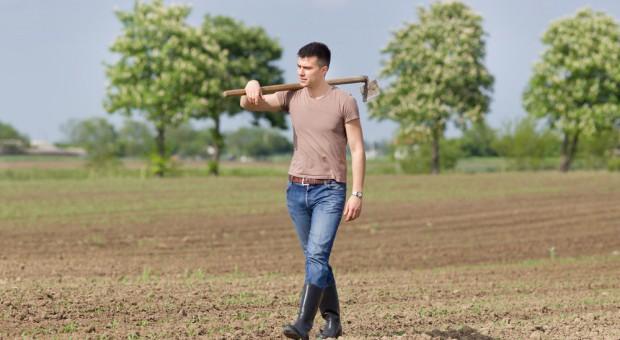 Więcej pieniędzy na zakup ziemi przez młodych rolników