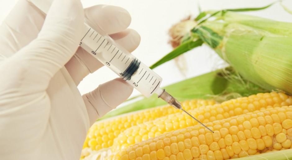 Rolnicy postulują wykreślenie zakazu stosowania pasz GMO