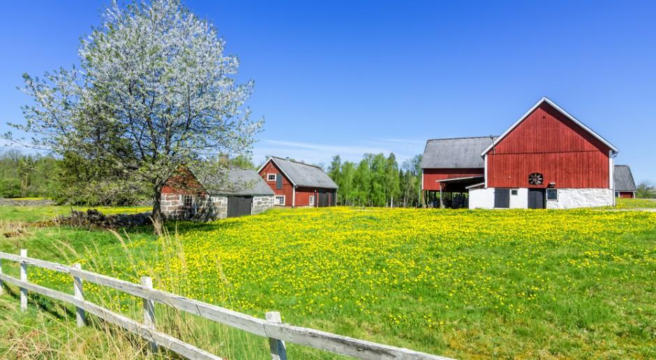 Znajomość rolnictwa w Skandynawii pojawiła się dzięki osadnikom z centralnej Europy