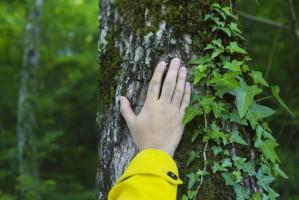 """Kowalczyk dla""""Do Rzeczy"""": Człowiek też jest częścią środowiska"""