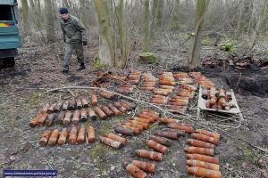 Arsenał znaleziony przy wycince drzew