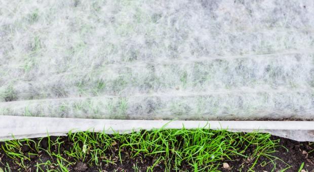 Agrotkaninę ulegającą biodegradacji opracowali naukowcy Politechniki Łódzkiej