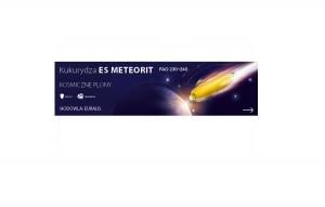 ES Meteorit