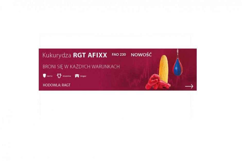RGT Afixx