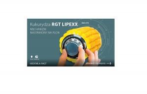 RGT Lipexx