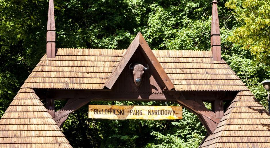 Nowy dyrektor Białowieskiego PN: Wśród priorytetów żubr i jego promocja