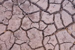 RPA ogłasza stan klęski żywiołowej