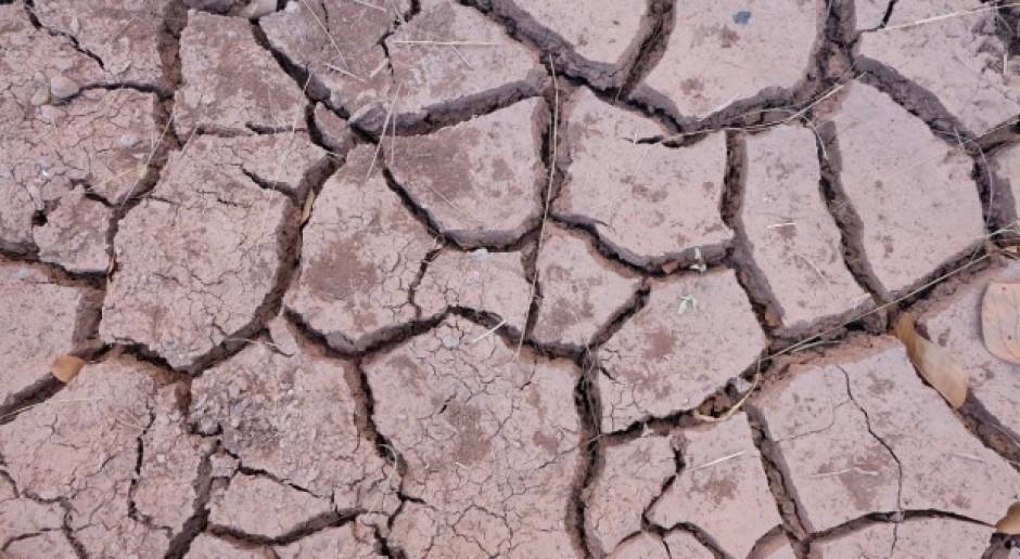RPA ogłasza stan klęski żywiołowej w związku z suszą w Kapsztadzie