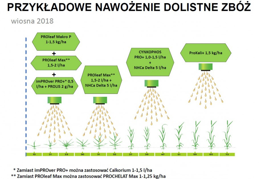 Nawożenie dolistne zbóż