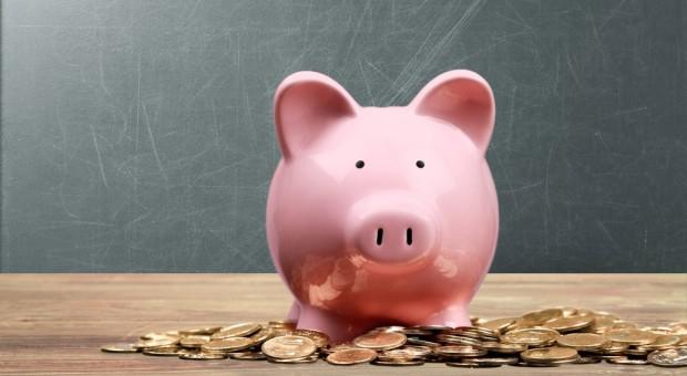 Od 19 lutego można składać wnioski o dofinansowanie inwestycji w gospodarstwach rolnych