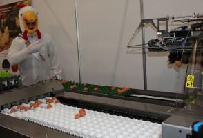 W ofercie maszynowej targów nie zabrakło urządzeń do sortowania i pakowania jaj.