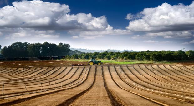 Rosja: Zdrożała ziemia rolnicza