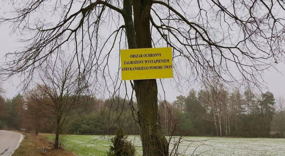 Zostały zniesione restrykcje w powiecie siedleckim dot. ASF
