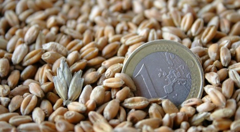 Stabilne ceny zbóż
