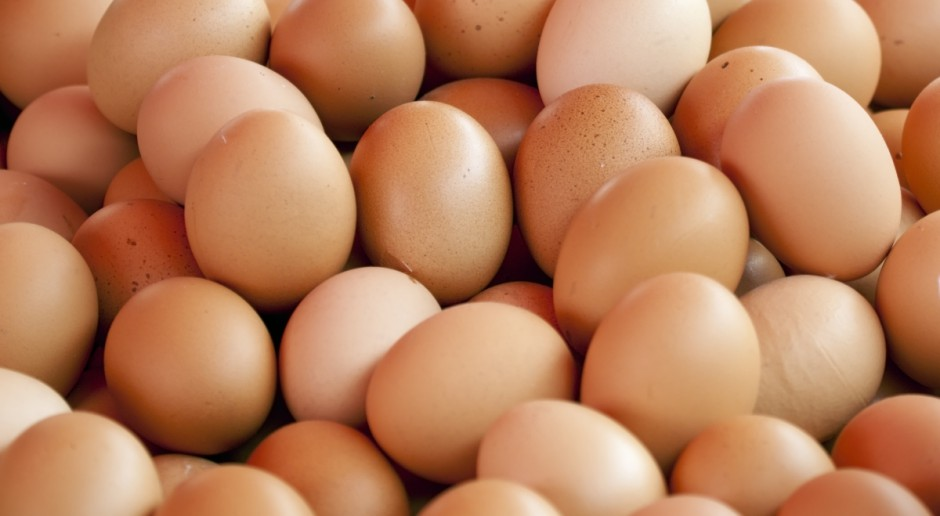 Eksport jaj z Ukrainy do UE zagrozi polskim producentom