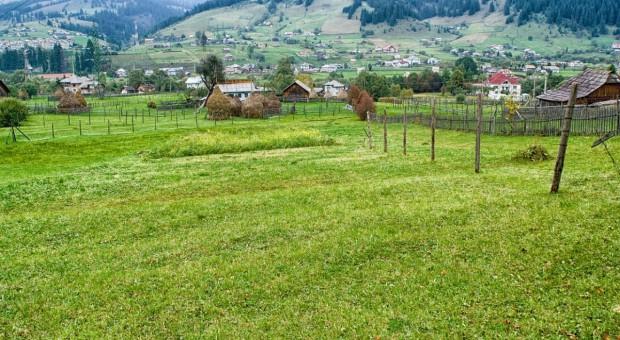 Rumunia: Ceny ziemi rolniczej wzrosły wielokrotnie