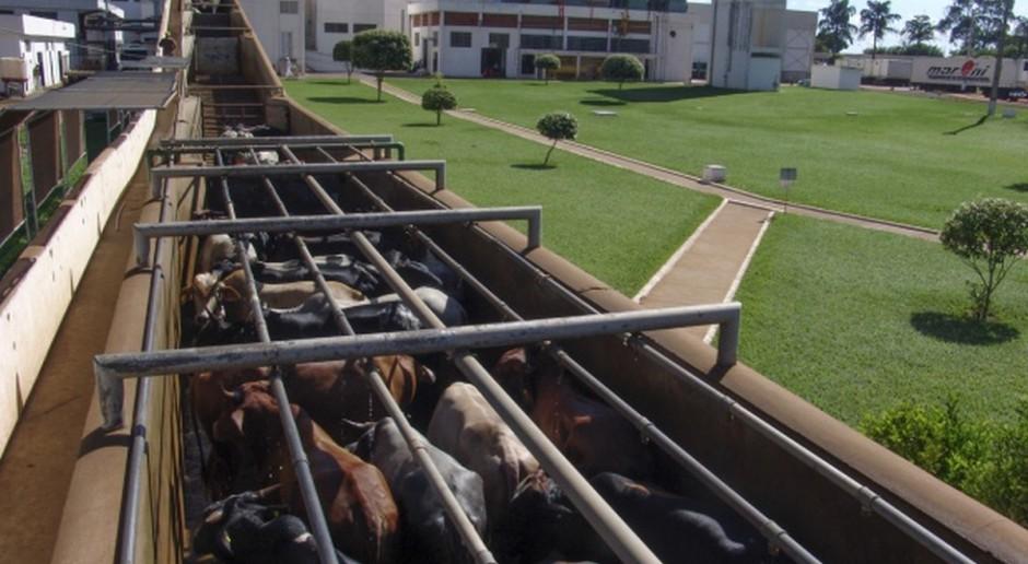 Mercosur: UE chce finalizacji negocjacji umowy w marcu