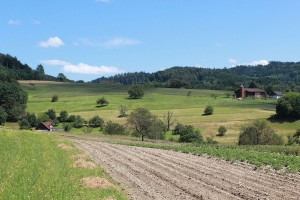 """Kiedy """"Restrukturyzacja małych gospodarstw""""?"""