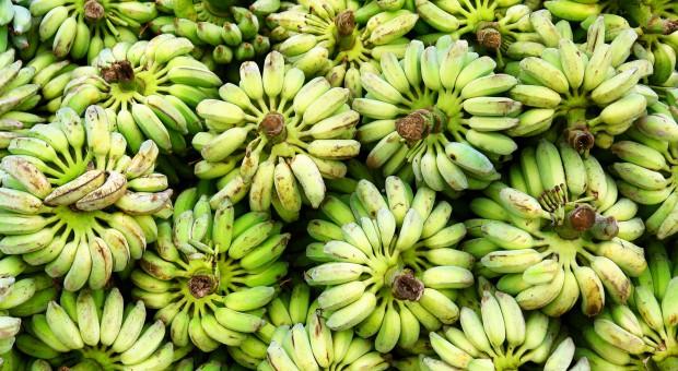 Ekspertka: Polska kupuje coraz więcej bananów