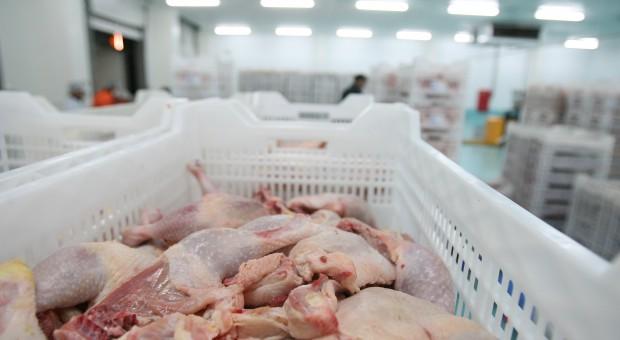 KRD-IG: Mięso drobiowe w Polsce jest bezpieczne dla konsumentów