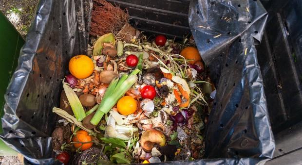 Projekt o przeciwdziałaniu marnowaniu żywności