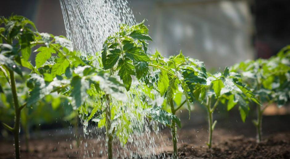 Bez poprawek do noweli Prawa wodnego