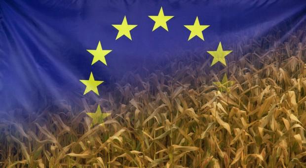 Jak WPR wpływa na zmiany w polskim rolnictwie? – Raport Specjalny