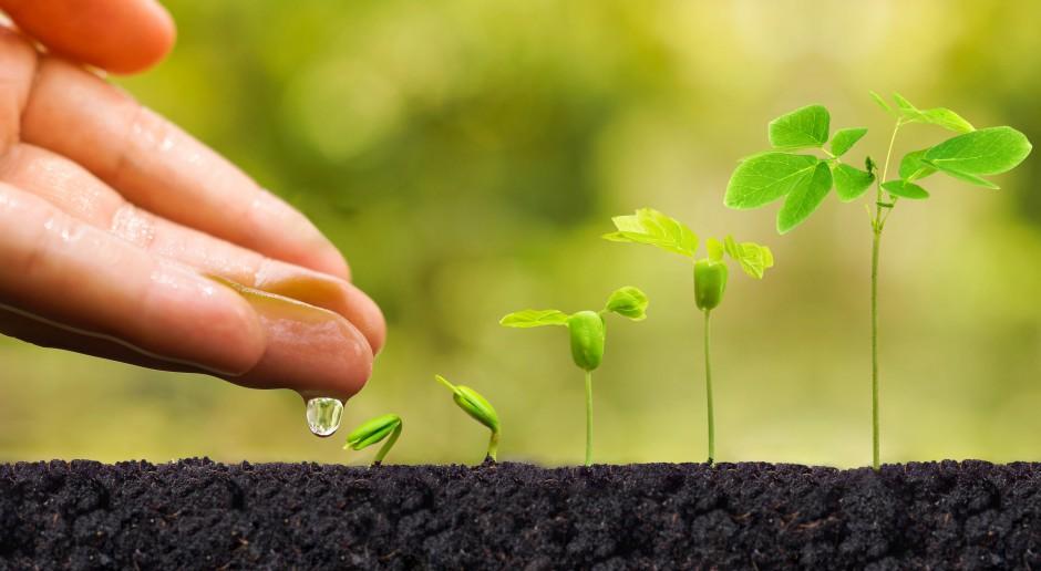Środki ochrony roślin na wiosnę 2018