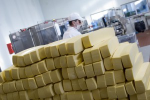GDT: Dalsze spadki cen przetworów mlecznych