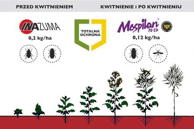 Stosowanie produktów Inazuma 130 WG i Mospilan 20 SP w programie Totalna Ochrona
